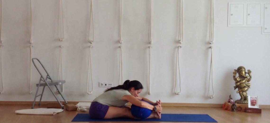 Nesta aula de Iyengar Yoga efetuaremos algumas preparações para as posturas sentadas de extensão do tronco à frente. Esta é uma aula de nível geral, que requerer que os alunos já tenham algum domínio das posturas de pé.